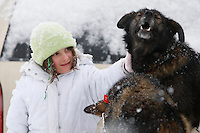 One of Kristen Crain's dogs gets a pet from a young race fan before the dog leaves the start of the 2009 Junior Iditarod on Knik Lake on Saturday Februrary 28, 2009.