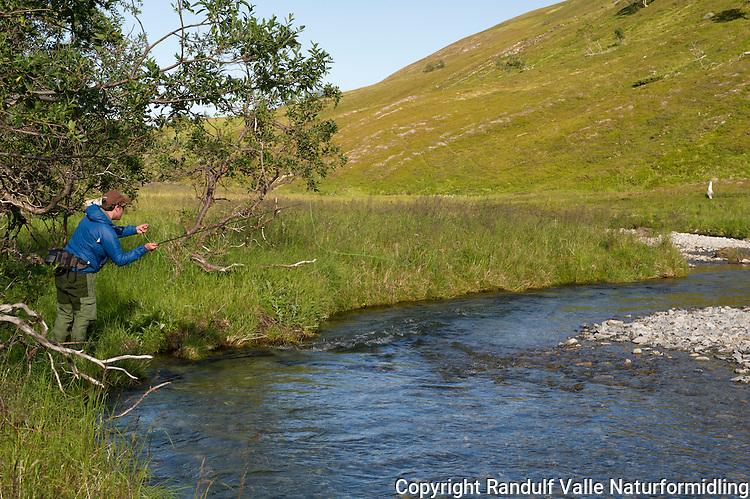 Mann fisker med flue i liten lakseelv. ---- Man flyfishing small salmon river.