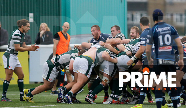 Bedford's Edward Taylor tries to hold back the charge during the Greene King IPA Championship match between Ealing Trailfinders and Bedford Blues at Castle Bar , West Ealing , England  on 29 October 2016. Photo by Carlton Myrie / PRiME Media