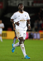 Bafetimbi Gomis of Swansea during the Barclays Premier League match between Swansea City and Leicester City at the Liberty Stadium, Swansea on December 05 2015