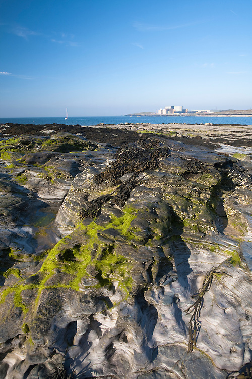 Wylfa Nuclear Plant from Cemlyn Bay Nature Reserve, Anglesey, Wales
