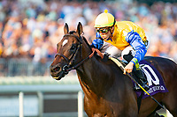 ARLINGTON HEIGHTS,IL-AUGUST 11: Robert Bruce,ridden by Irad Ortiz Jr.,wins the Arlington Million at Arlington International Race Track on August 11,2018 in Arlington Heights,Illinois (Photo by Kaz Ishida/Eclipse Sportswire/Getty Images)