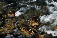 Sea water swirling amongst rocks, showing blurred movement. El Hierro, Canary Islands.