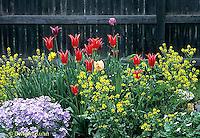 HS47-017a  Flower Garden