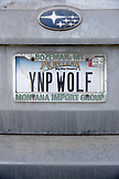 USA, Wyoming, Yellowstone National Park, wolf-watcher vanity plate, Yellowstone National Park Wolf