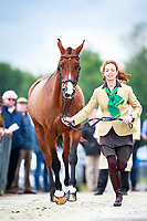 AUS-Catherine Burrell with Duke during the First Horse Inspection. 2017 NED-Military Boekelo CCIO3* FEI Nation Cup Eventing. Wednesday 4 October. Copyright Photo: Libby Law Photography