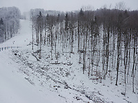 FOREST_LOCATION_90175