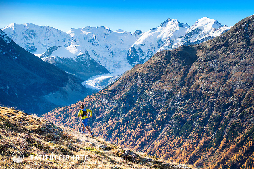Trail running on Piz Languard, above Pontresina, Switzerland during fall colors. In the background is the Piz Bernina and Morteratsch Glacier.