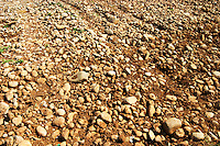 Typical red reddish clay sand sandy soil mixed with pebbles rocks stones in varying amount. Vineyard on the plain near Mostar city. Hercegovina Vino, Mostar. Federation Bosne i Hercegovine. Bosnia Herzegovina, Europe.