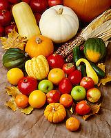 Agriculture - Autumn fruits & veggies: Acorn & Butternut squash, Royal Gala & Granny Smith apples, Valencia orange, Indian Corn, tangerines, grapefruit, pomegranates, Red Bartlett pears, Yellow Crookneck squash, persimmons, cucumbers & pumpkin.