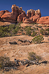 Ridge Along Chesler Park Trail, Canyonlands National Park, Utah