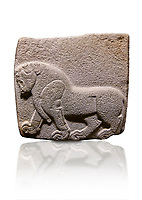 Aslantepe Hittite relief sculpted orthostat stone panel. Limestone, Aslantepe, Malatya, 1200-700 BC.  Anatolian Civilisations Museum, Ankara, Turkey. Depiction of a horse walking.<br /> <br /> Against a white background.