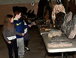 St. Joseph's student's look at a fossils display during the Dinosaurs Rock show at St. Joseph School in Holbrook on Friday February 27, 2015.<br /> (Photo by Gary Wilcox)