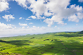 PORTUGAL, The Azores, Terceira Island, Green Fields of the Crater of Serra de Cume