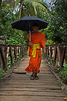 Luang Prabang Buddhist Monks