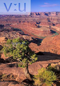 Gooseneck and Dead Horse Point, Dead Horse Point State Park, Utah, USA.