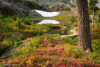 The cool fall day, glimpses of Bagly Creek and snow fields provide energy to walk down the trail.  The still pond reflected the snow field and columnar basalt wall.