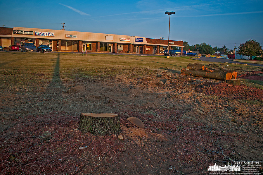 Only stumps remain of a line of trees removed for remodeling of Westerville Square Shopping Center to make way for the construction of a new WalMart store in the Columbus suburb. The store will approximately 108,000-square-feet, about half the  size of a traditional WalMart super store..