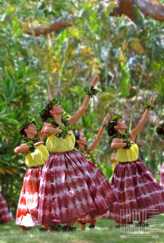 Hula dancers at the Prince Lot Hula Festival at Moanalua Gardens, O'ahu.