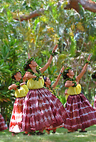 Hula dancers at the Prince Lot Hula Festival at Moanalua Gardens, O'ahu.
