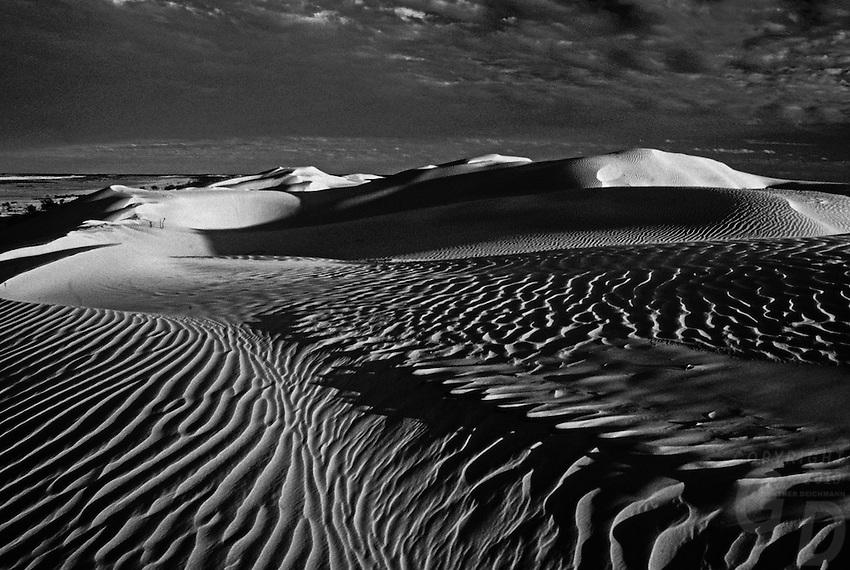 Black and White of Sand dunes in the Simpson desert, Australia