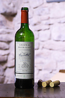 Red wine 2005. Chateau Pech-Latt. Near Ribaute. Les Corbieres. Languedoc. France. Europe. Bottle.