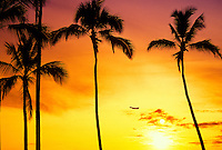 Airplane at sunset with palm trees and sun, Oahu