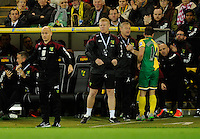 Manager Alex Neil during the Barclays Premier League match between Norwich City and Swansea City played at Carrow Road, Norwich on November 7th 2015