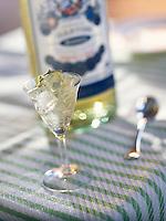 "Europe/Italie/Emilie-Romagne/Bologne : Martini cocktail - Recette de Marco Fadiga du restaurant ""La Pernice E La Gallina"""