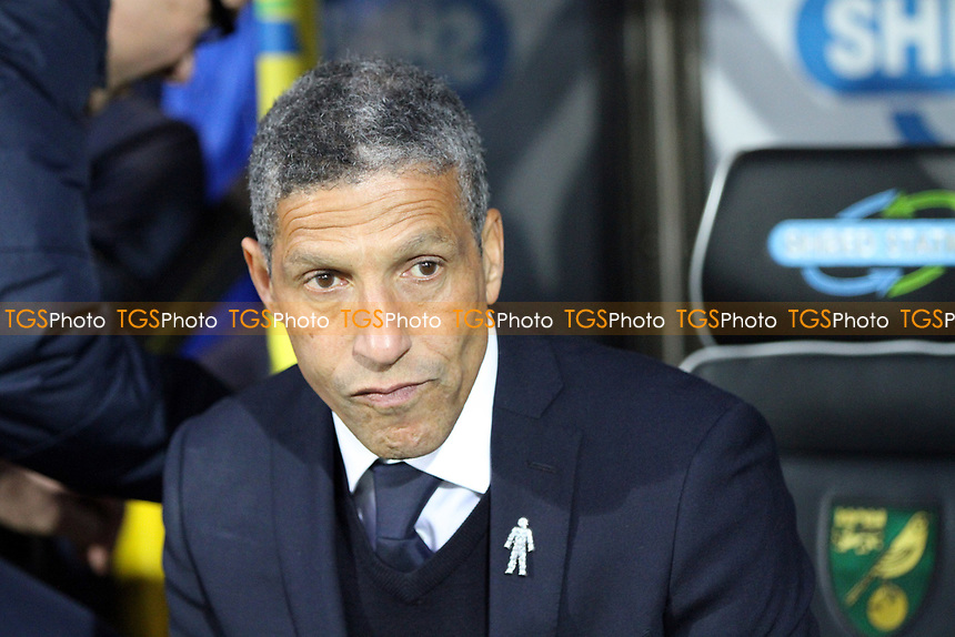 Brighton and Hove Albion manager Chris Hughton during Norwich City vs Brighton & Hove Albion, Sky Bet EFL Championship Football at Carrow Road on 21st April 2017