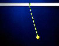 SIMPLE PENDULUM IN COURSE OF SWING<br /> Round Bob on the End of a Cord<br /> <br /> A simple pendulum consists of a mass  hanging from a length of string  and fixed at a pivot point. When displaced to an initial angle and released, the pendulum will swing back and forth with periodic motion.