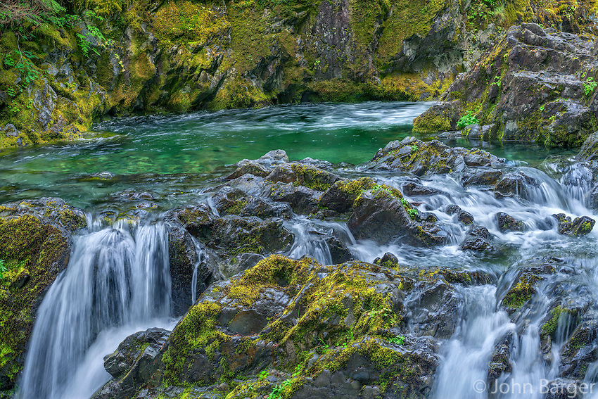 ORCAN_D112 - USA, Oregon, Willamette National Forest, Opal Creek Scenic Recreation Area, Multiple small falls and swift flow of Opal Creek with surrounding lush vegetation.