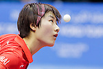 ITTF World Tour Grand Finals 2013
