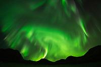 Northern lights fill sky above mountain silhouette, Vestvågøy, Lofoten Islands, Norway
