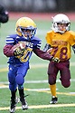 2015 PEE WEE FOOTBALL CHAMPIONSHIPS