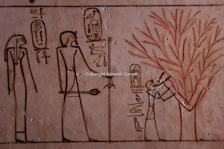 Zahi Hawass Secret Egypt Travel Guide; Egypt; archaeology; Luxor; West Bank; Valley of the Kings, Tomb of Thutmose III, Thutmosis III, goddess Isis in form of tree nursing Tuthmosis III, New Kingdom