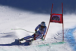 SUI's Ralph Weber competes during the FIS Alpine Ski World Cup Men's Super-G in Val Gardena, on December 16, 2016. Norway's Kjetil JANSRUD wins the race ahead of his compatriot Aleksander Aamodt KILDE, third Canada's Erik GUAY.<br /> © Pierre Teyssot