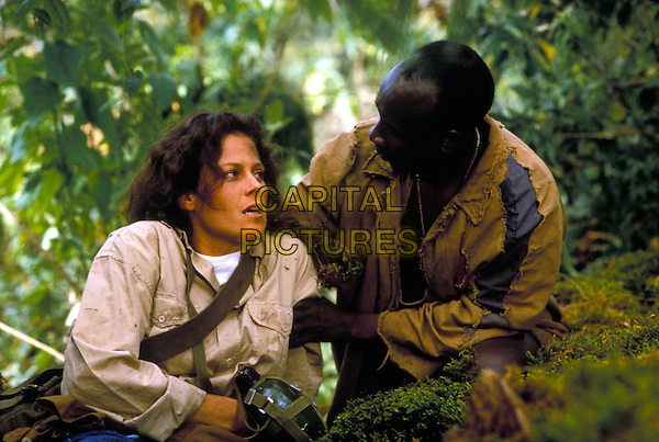 Gorillas in the Mist (1988) <br /> Sigourney Weaver<br /> *Filmstill - Editorial Use Only*<br /> CAP/KFS<br /> Image supplied by Capital Pictures