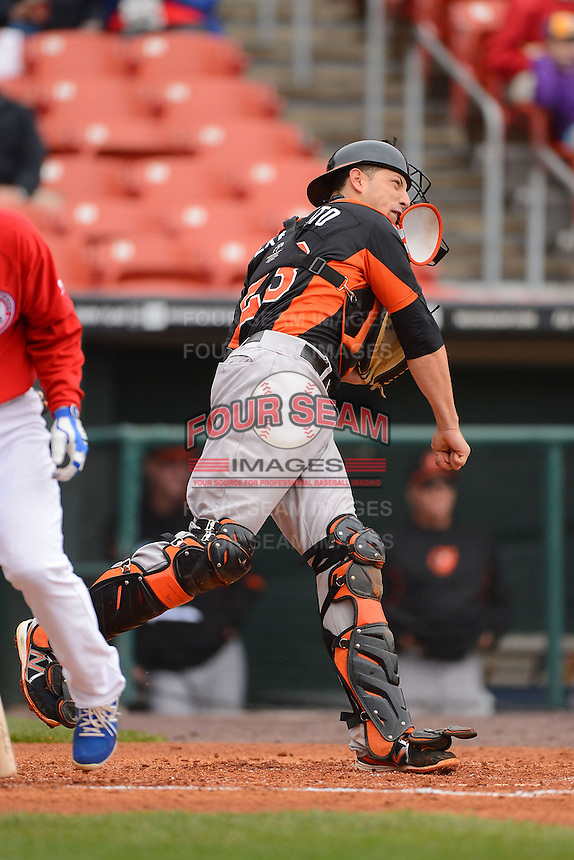Norfolk Tides catcher Luis Exposito #23 throws down to second during a game against the Buffalo Bisons on May 9, 2013 at Coca-Cola Field in Buffalo, New York.  Norfolk defeated Buffalo 7-1.  (Mike Janes/Four Seam Images)