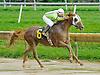 Langley winning at Delaware Park on 9/3/12