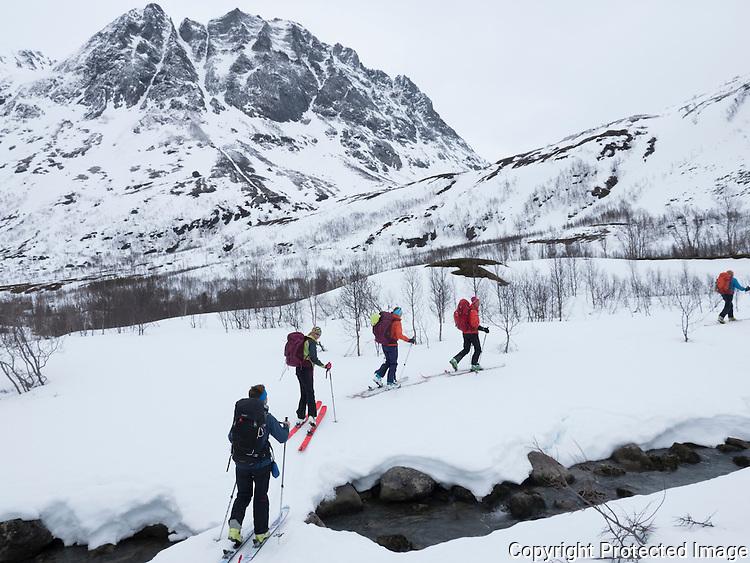 Gruppe av skiløpere krysser åpen bekk på snøbru på vei opp fra Langfjordhamn mot Langfjordjøkelen. ---- Skiers in spring conditions.