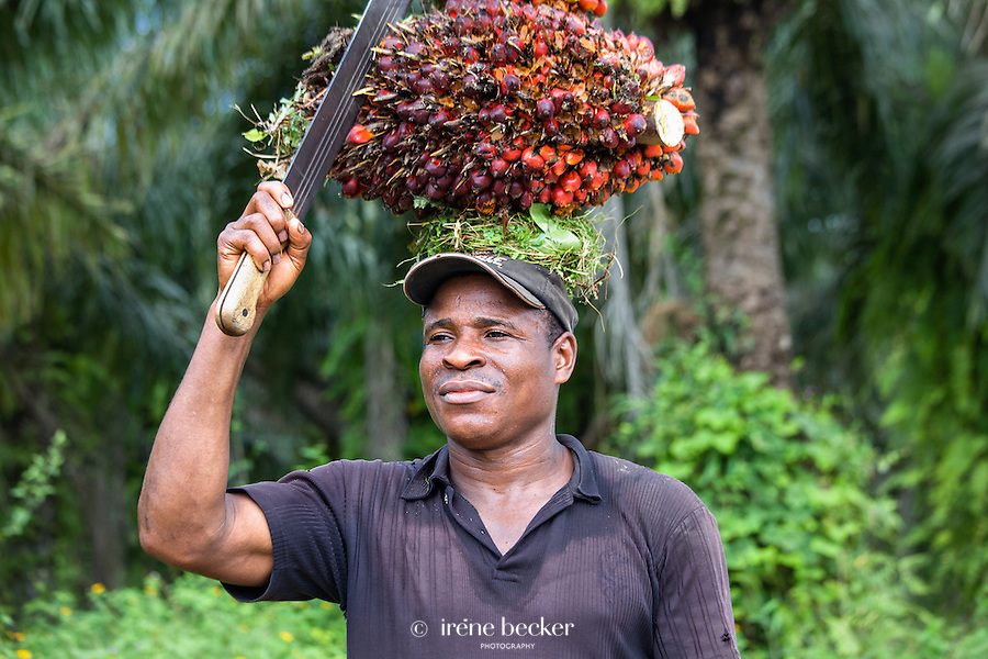 A worker carries freshly cut palm fruits to be used in making palm oil, at a plantation. Yenagoa, Nigeria.