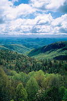 Lost Creek Cove<br />