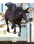 Bill Tutor competes in the bareback bronc riding event at the Reno Rodeo in Reno, Nev., on Thursday, June 27, 2013.<br /> Photo by Cathleen Allison