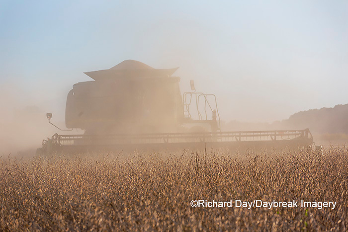63801-13205 Harvesting soybeans in fall  Marion Co. IL