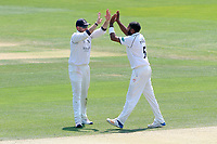 Jeetan Patel of Warwickshire is congratulated by his team mates after taking the wicket of Alastair Cook during Essex CCC vs Warwickshire CCC, Specsavers County Championship Division 1 Cricket at The Cloudfm County Ground on 19th June 2017