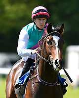 """Mapped ridden by Richard Kingscote goes down to the start of  The Willton Homes """"Confined"""" Novice Stakes (Colts & Geldings)  during Afternoon Racing at Salisbury Racecourse on 17th May 2018"""