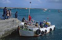 Europe/France/Bretagne/29/Finistère/Ile de Molène: Le port - Navette vers le continent - Embarquement des passagers
