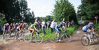 Niki Terpstra (NLD/Etixx-QuickStep)<br /> <br /> 1st Dwars door het Hageland 2016<br /> (pics by L&eacute;on Van Bon)