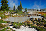 Yellowstone Hot Springs, Mudpots & Microorganisms